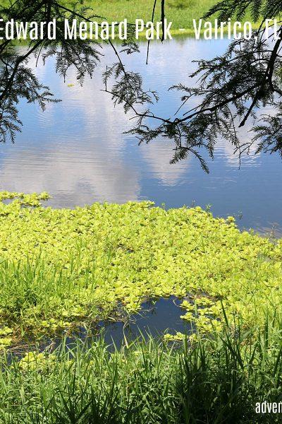 Edward Menard Park – Valrico, FL.