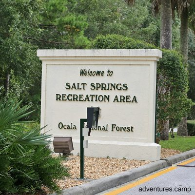 Salt Springs in the Ocala National Forest